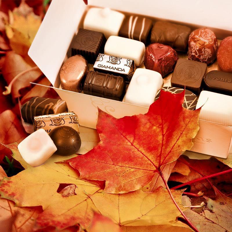 De herfst is in het land ... tijd om samen gezellig te genieten van Leonidas chocolade